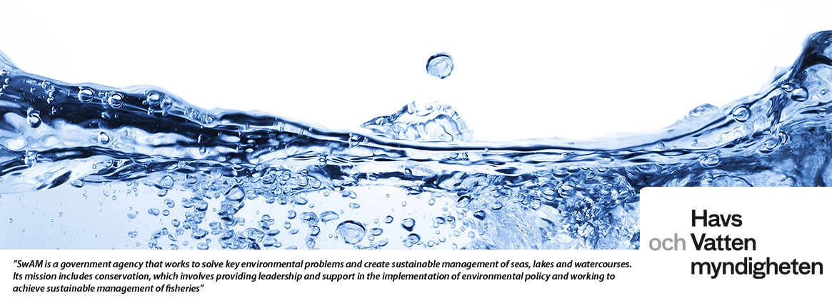 Havs- och Vattenmyndigheten